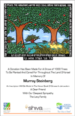 Tu B'Shevat - The New Year of Trees