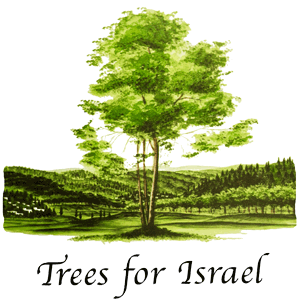 plant-a-tree-israel-cat2